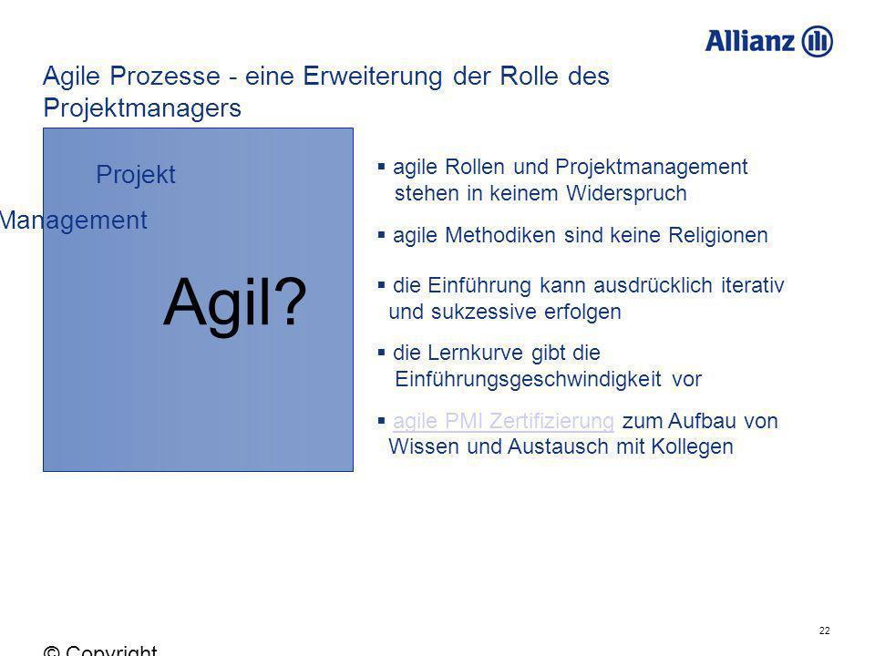 Agile Prozesse - eine Erweiterung der Rolle des Projektmanagers