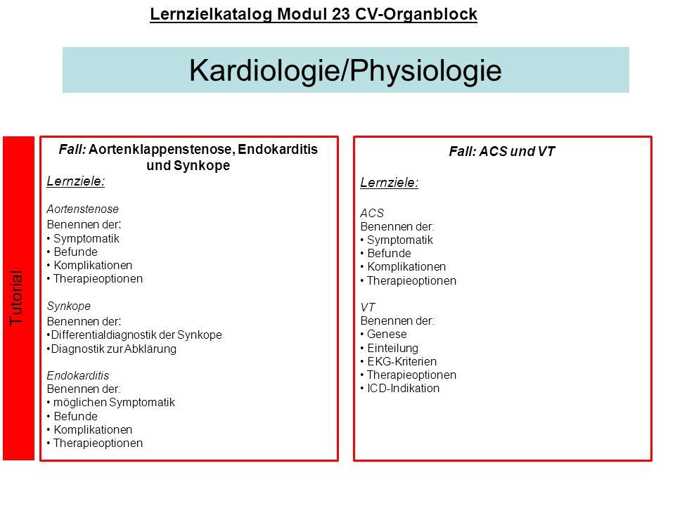 Kardiologie/Physiologie