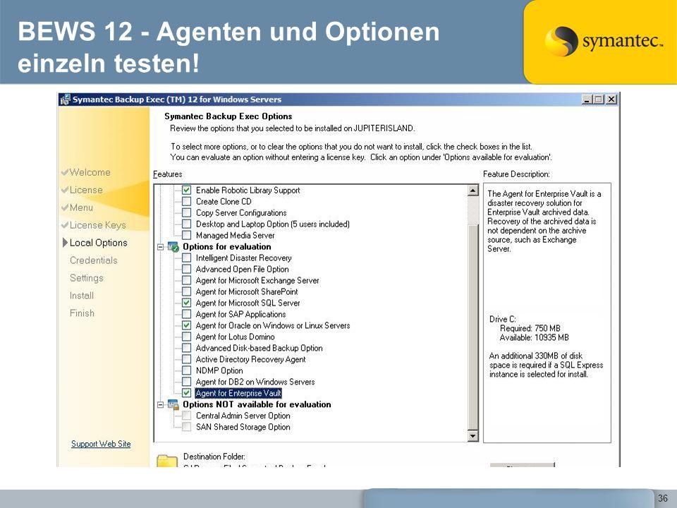 BEWS 12 - Agenten und Optionen einzeln testen!