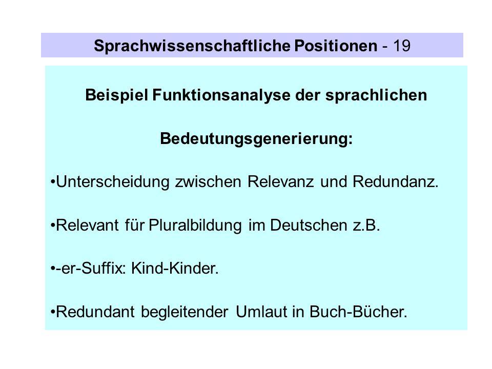 Beispiel Funktionsanalyse der sprachlichen Bedeutungsgenerierung: