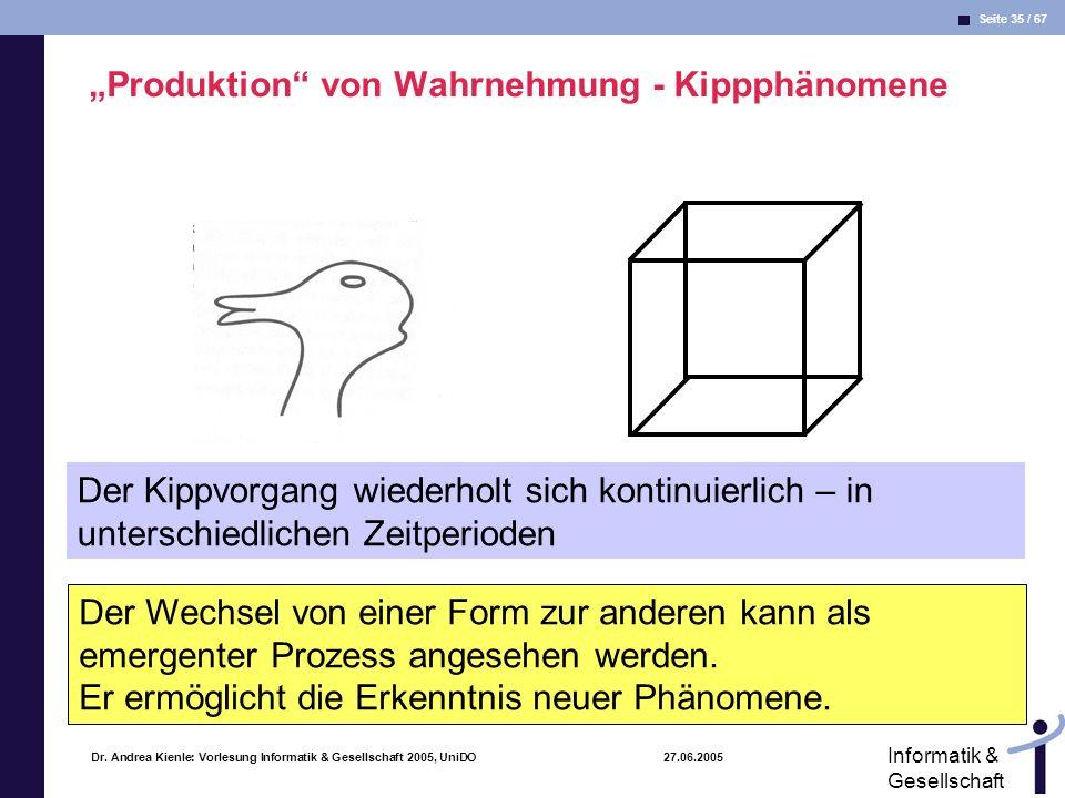 """""""Produktion von Wahrnehmung - Kippphänomene"""