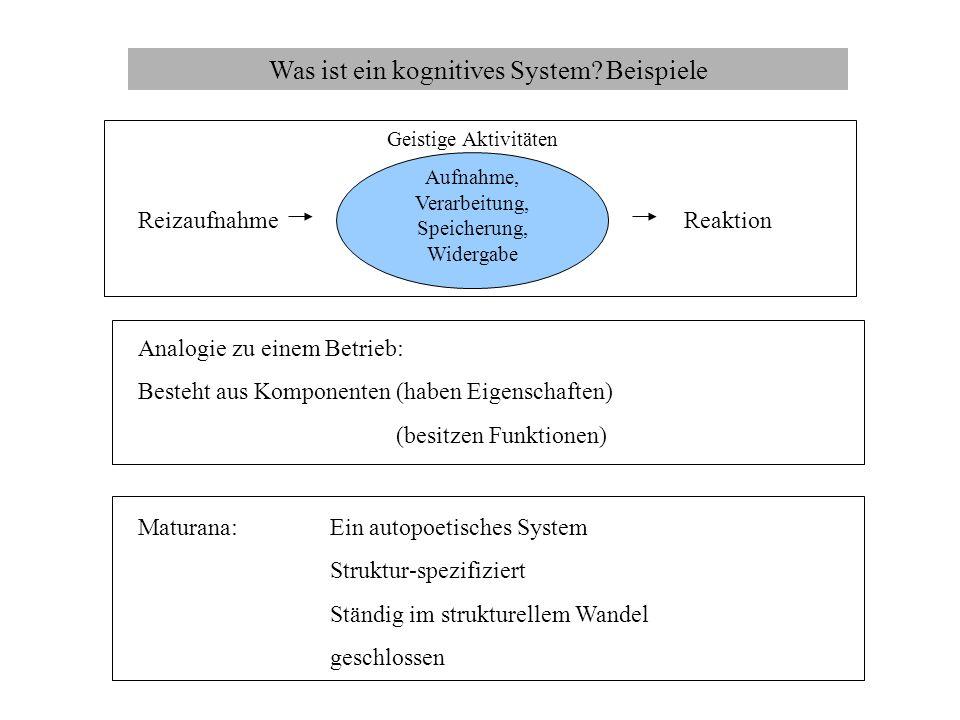 Was ist ein kognitives System Beispiele