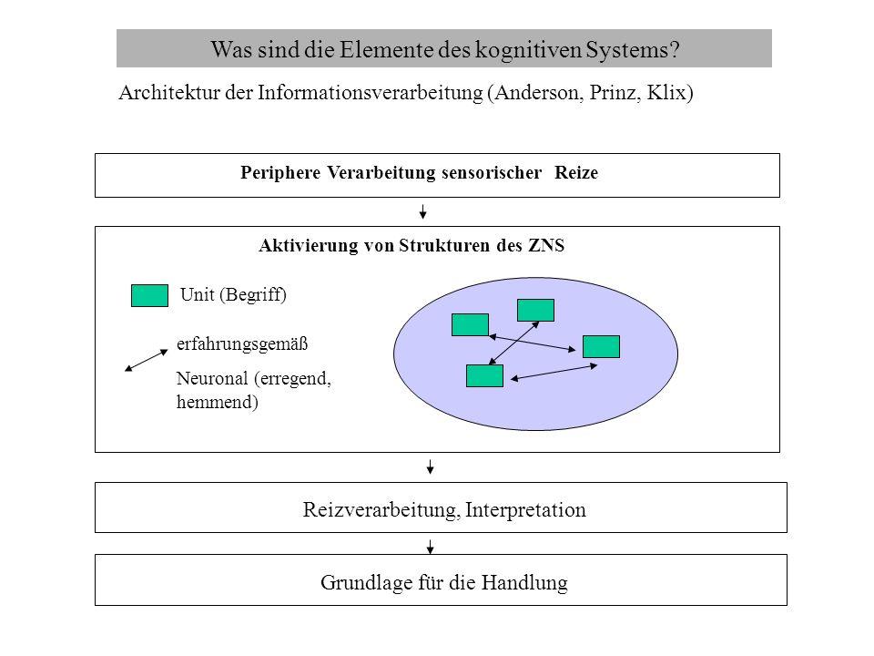Was sind die Elemente des kognitiven Systems