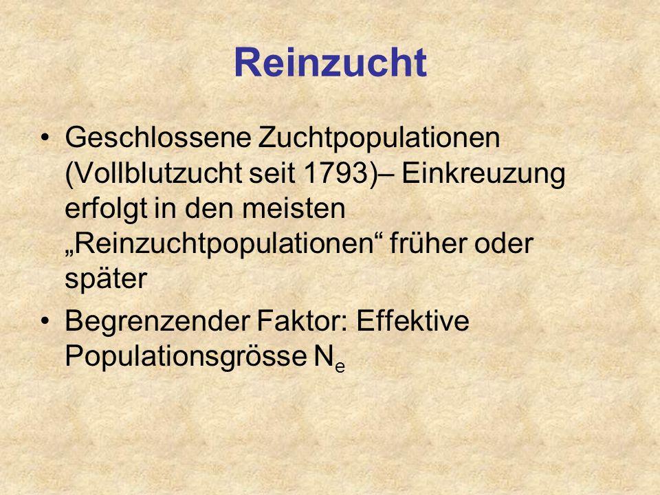 """Reinzucht Geschlossene Zuchtpopulationen (Vollblutzucht seit 1793)– Einkreuzung erfolgt in den meisten """"Reinzuchtpopulationen früher oder später."""
