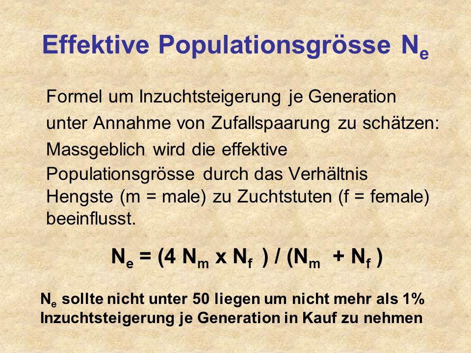 Effektive Populationsgrösse Ne