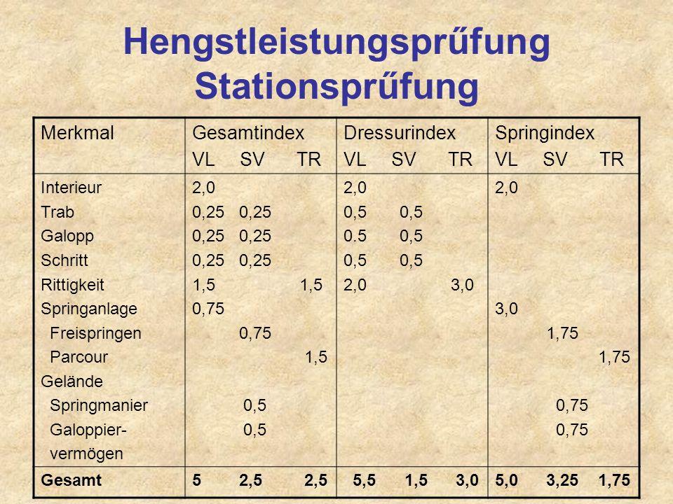 Hengstleistungsprűfung Stationsprűfung