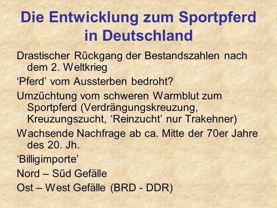 Die Entwicklung zum Sportpferd in Deutschland