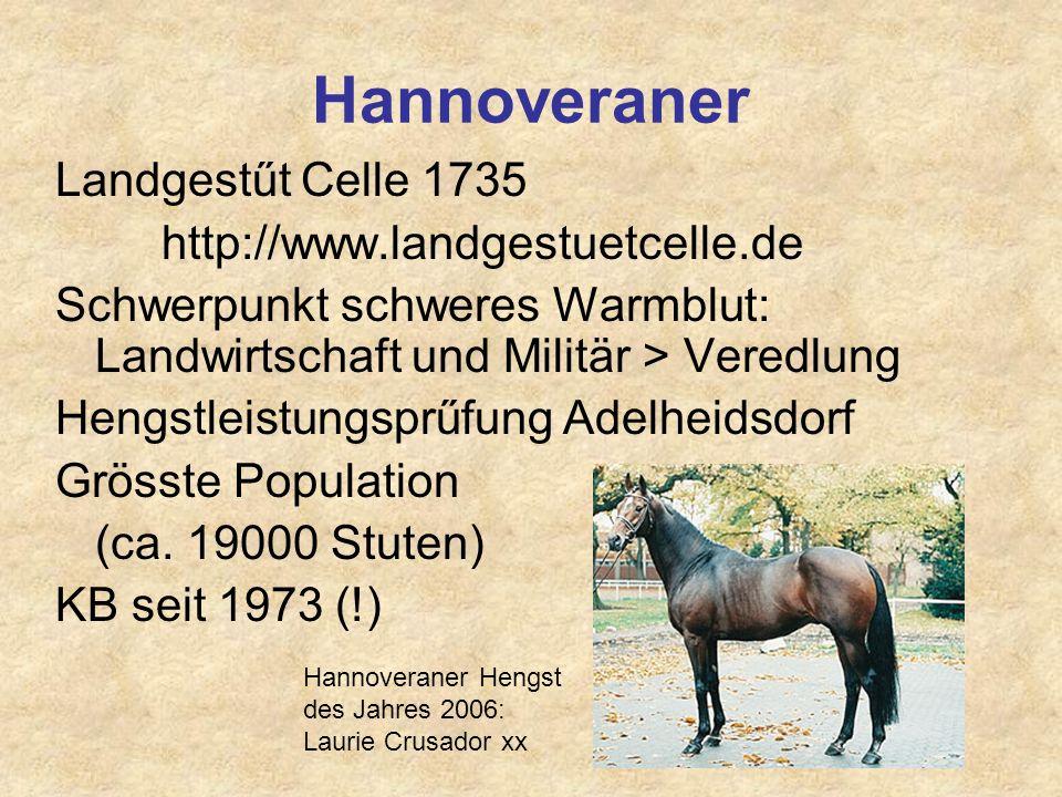 Hannoveraner Landgestűt Celle 1735 http://www.landgestuetcelle.de