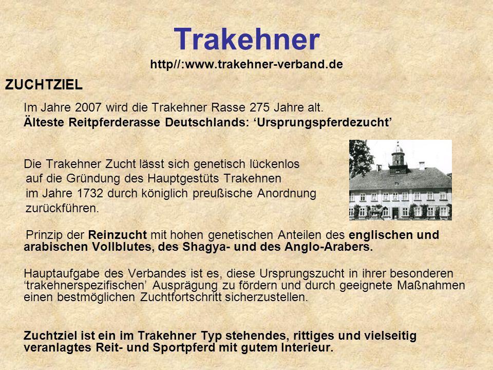 Trakehner http//:www.trakehner-verband.de