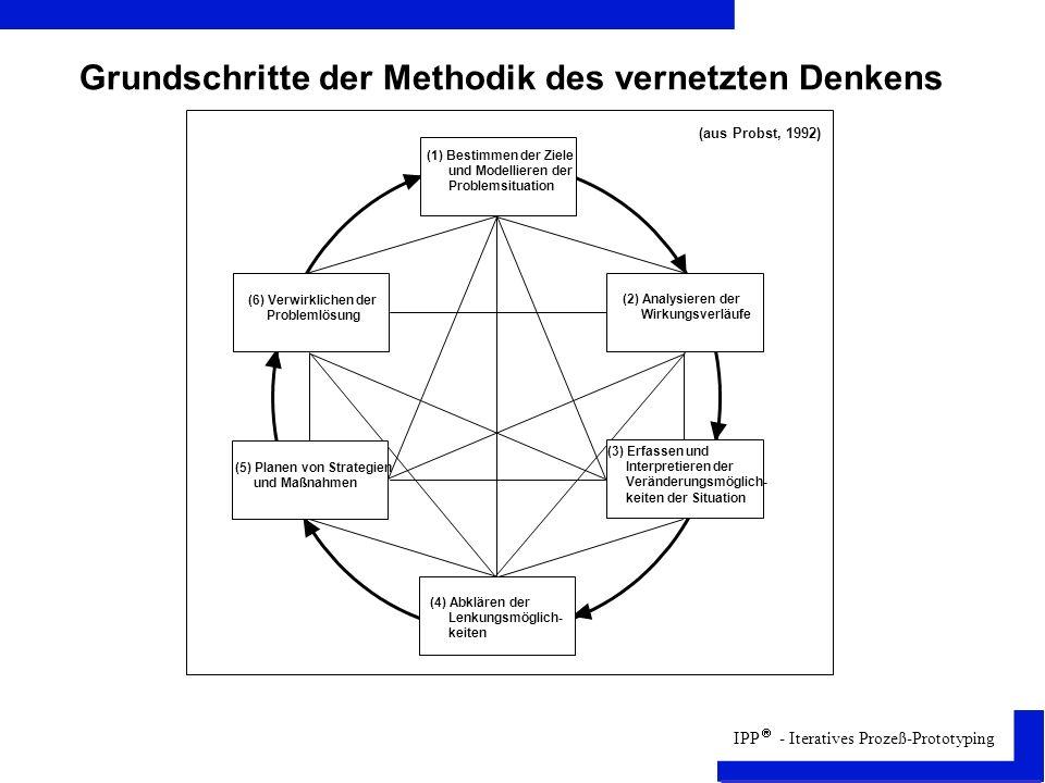 Grundschritte der Methodik des vernetzten Denkens