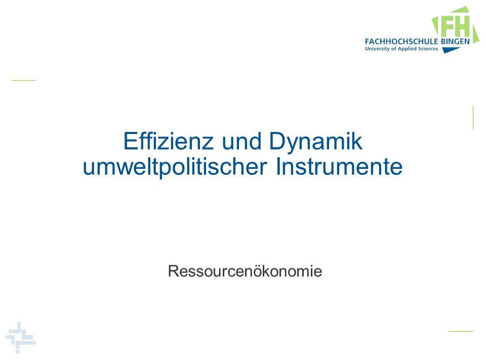 Effizienz und Dynamik umweltpolitischer Instrumente