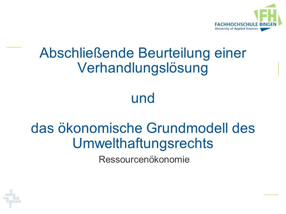 Abschließende Beurteilung einer Verhandlungslösung und das ökonomische Grundmodell des Umwelthaftungsrechts
