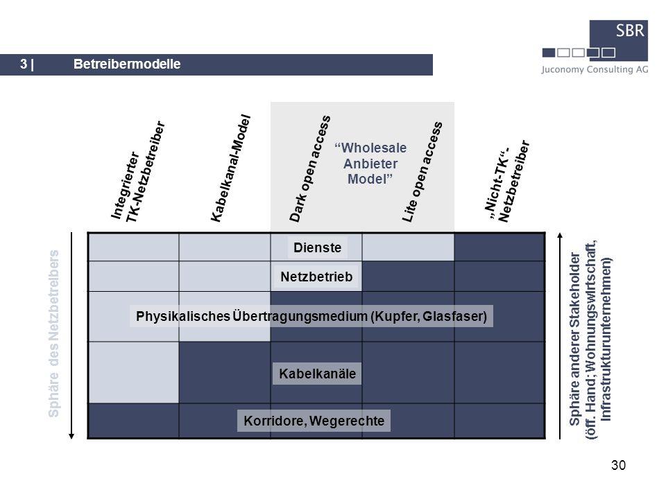 Integrierter TK-Netzbetreiber Wholesale Anbieter Model