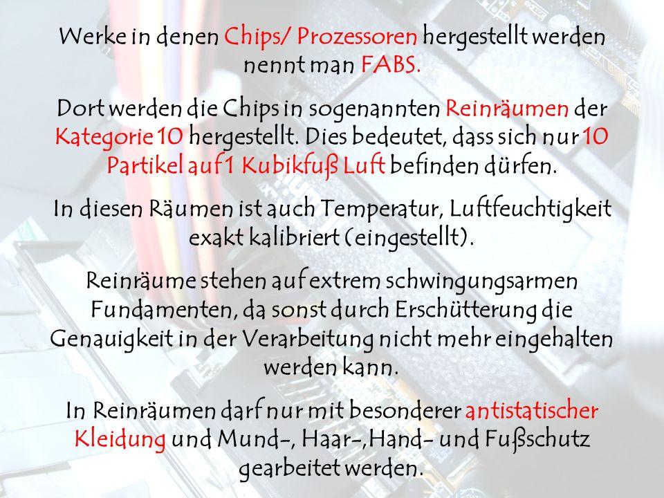 Werke in denen Chips/ Prozessoren hergestellt werden nennt man FABS.