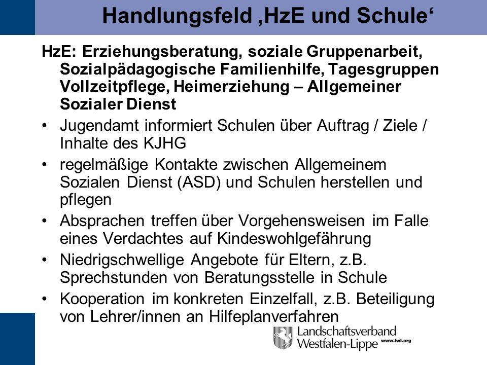 Handlungsfeld 'HzE und Schule'