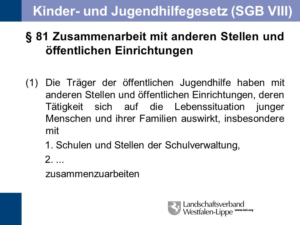 Kinder- und Jugendhilfegesetz (SGB VIII)