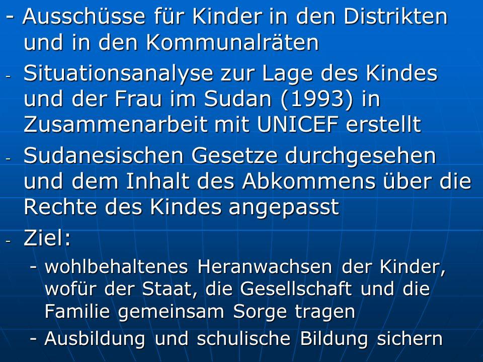 - Ausschüsse für Kinder in den Distrikten und in den Kommunalräten