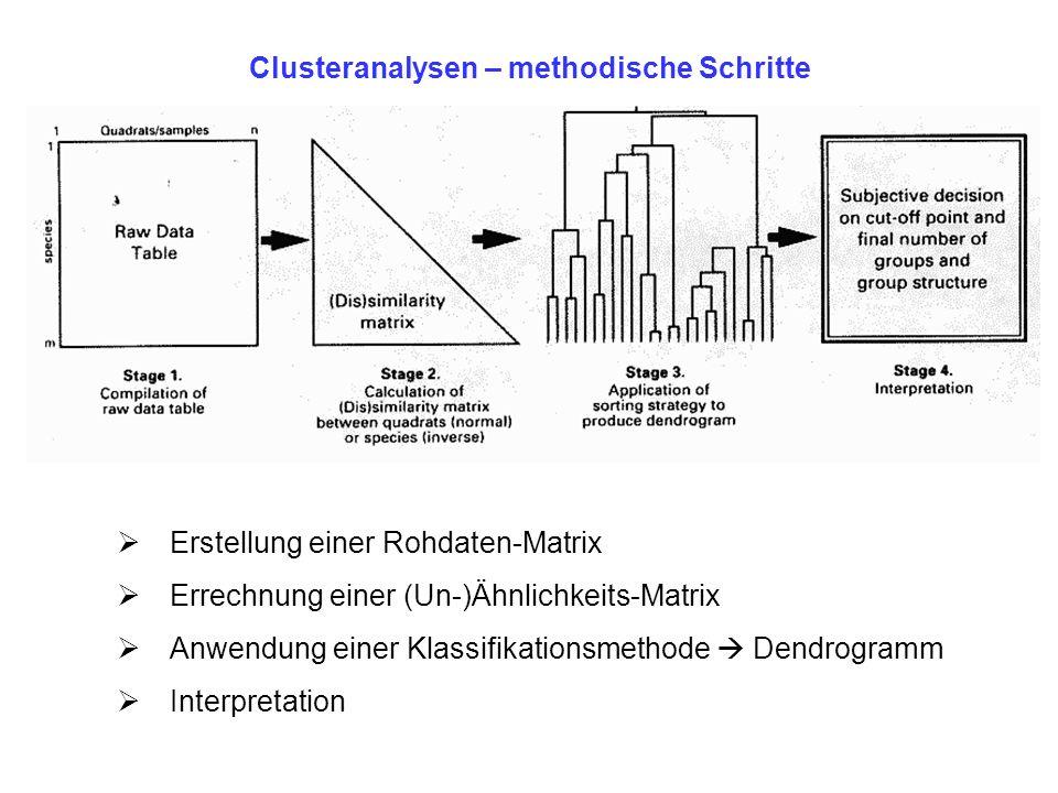 Clusteranalysen – methodische Schritte