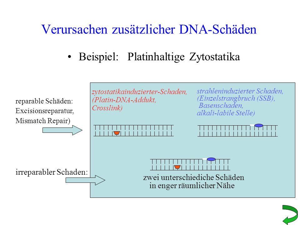Verursachen zusätzlicher DNA-Schäden