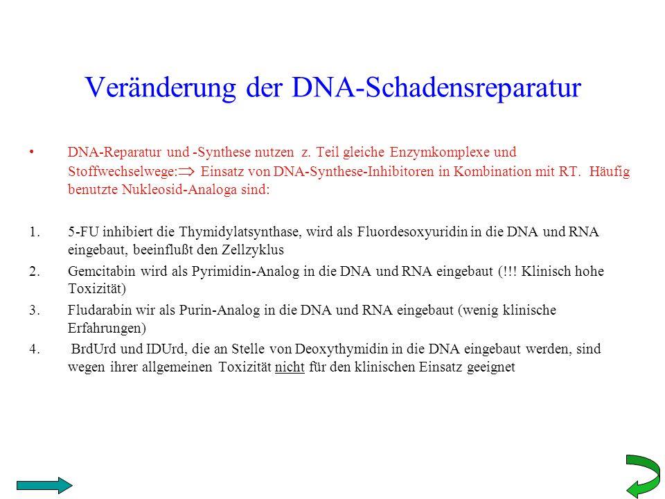 Veränderung der DNA-Schadensreparatur