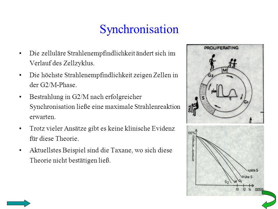 Synchronisation Die zelluläre Strahlenempfindlichkeit ändert sich im Verlauf des Zellzyklus.