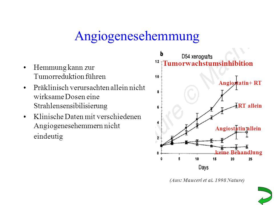 Angiogenesehemmung Hemmung kann zur Tumorreduktion führen