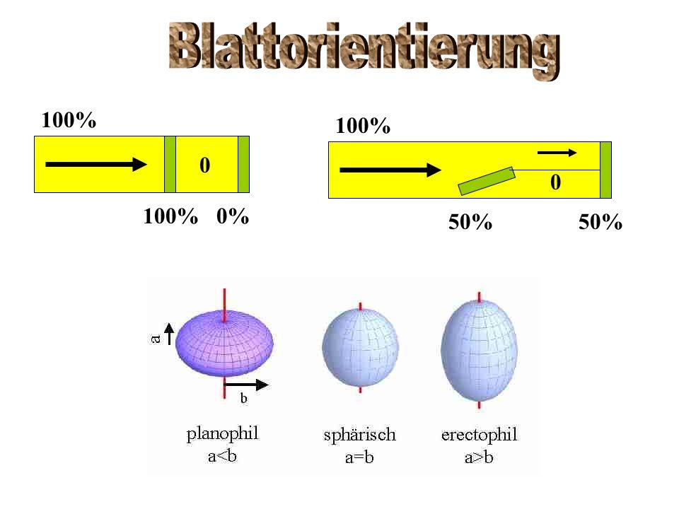 Blattorientierung 100% 0% 100% 50%
