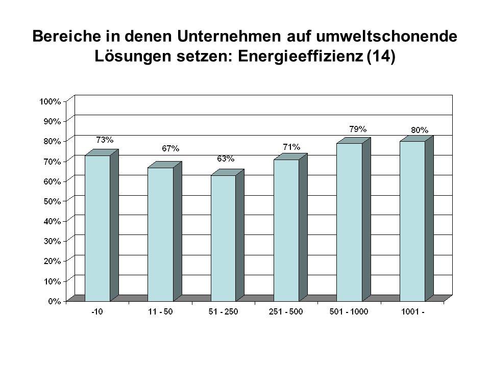 Bereiche in denen Unternehmen auf umweltschonende Lösungen setzen: Energieeffizienz (14)