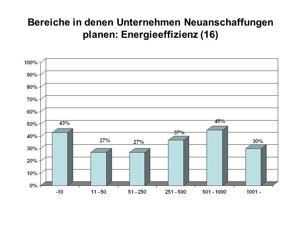 Bereiche in denen Unternehmen Neuanschaffungen planen: Energieeffizienz (16)
