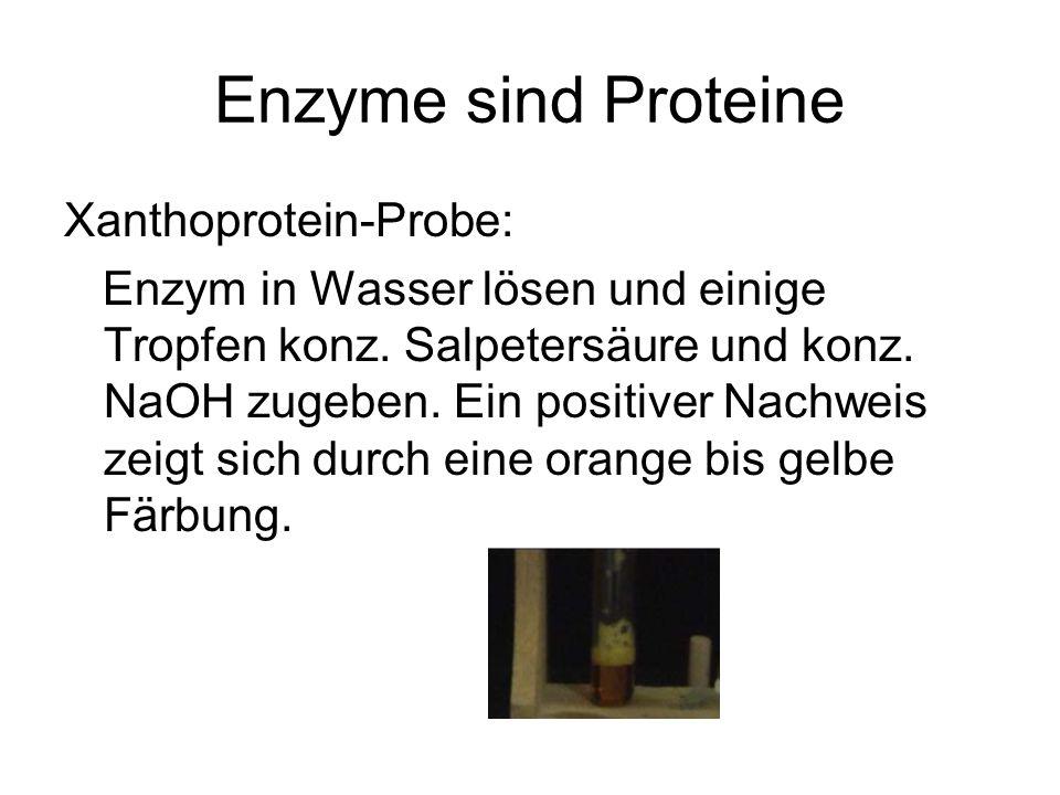 Enzyme sind Proteine Xanthoprotein-Probe: