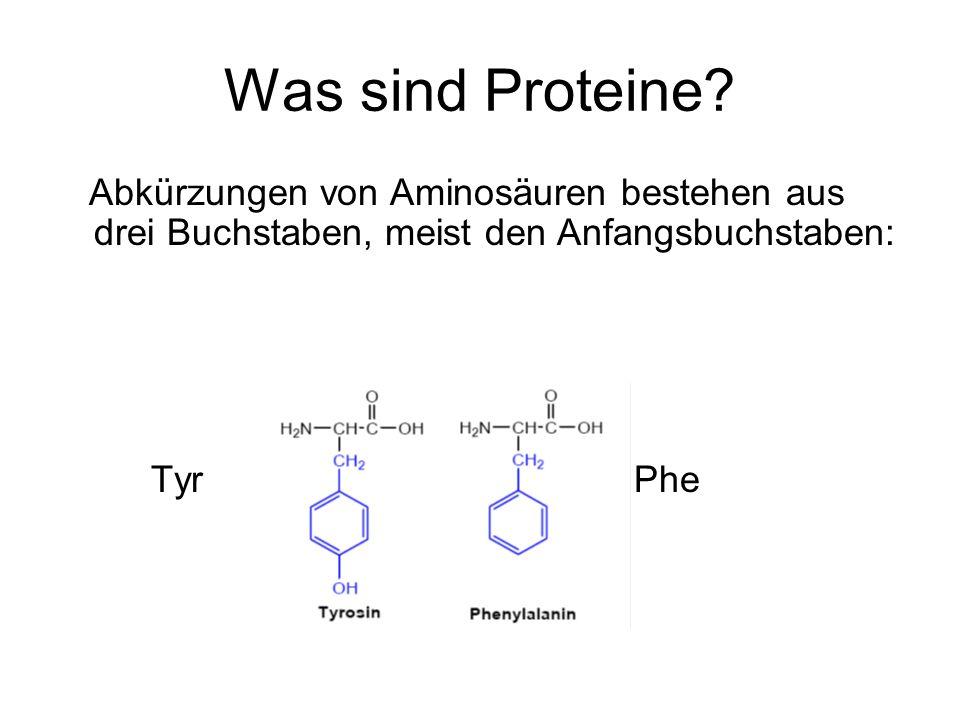 Was sind Proteine Abkürzungen von Aminosäuren bestehen aus drei Buchstaben, meist den Anfangsbuchstaben: