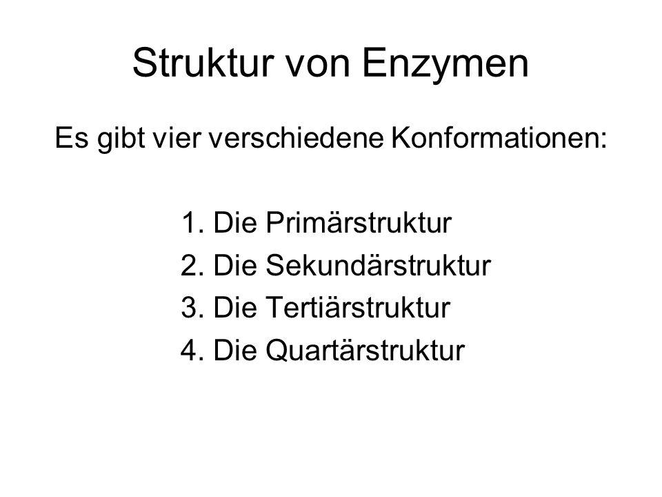 Es gibt vier verschiedene Konformationen: