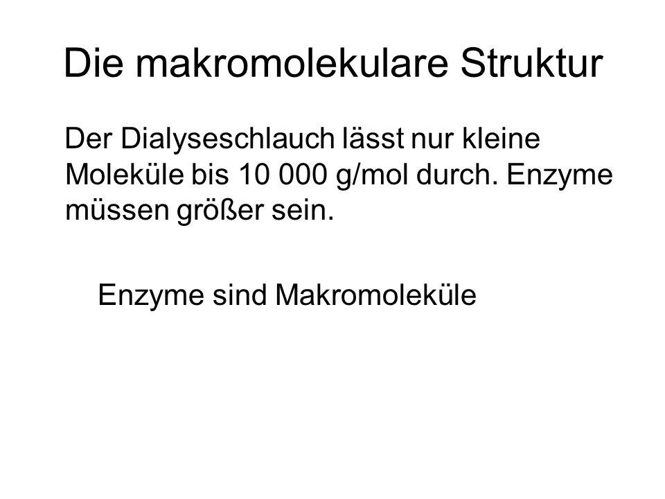Die makromolekulare Struktur