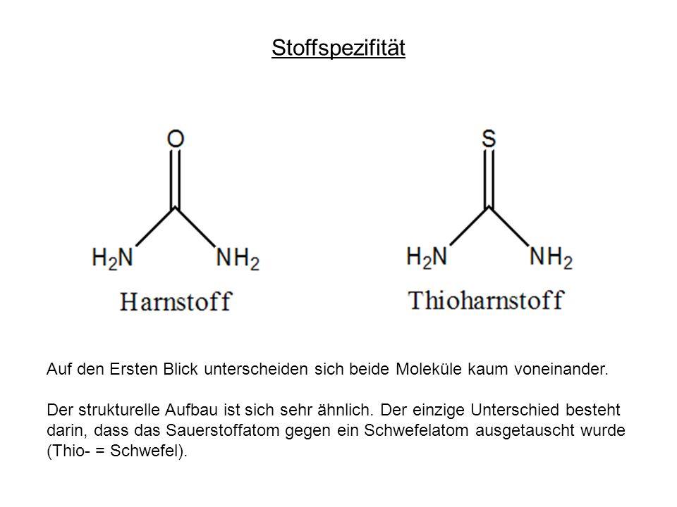 Stoffspezifität Auf den Ersten Blick unterscheiden sich beide Moleküle kaum voneinander.