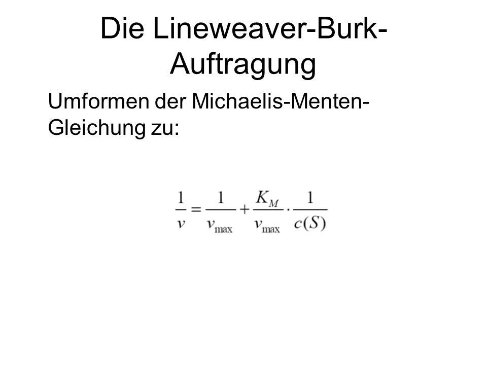 Die Lineweaver-Burk-Auftragung