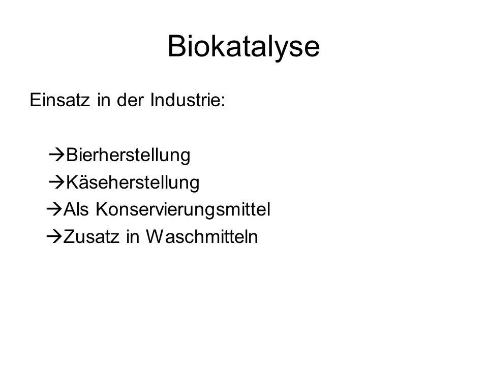 Biokatalyse Einsatz in der Industrie: Bierherstellung