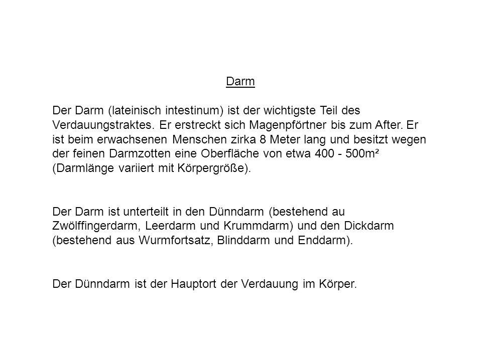 Atemberaubend Diagramm Des Verdauungstraktes Galerie - Menschliche ...