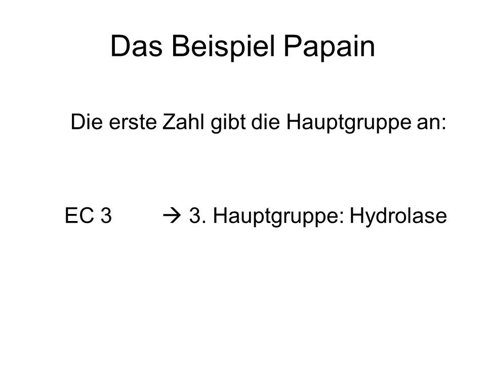 Das Beispiel Papain Die erste Zahl gibt die Hauptgruppe an: