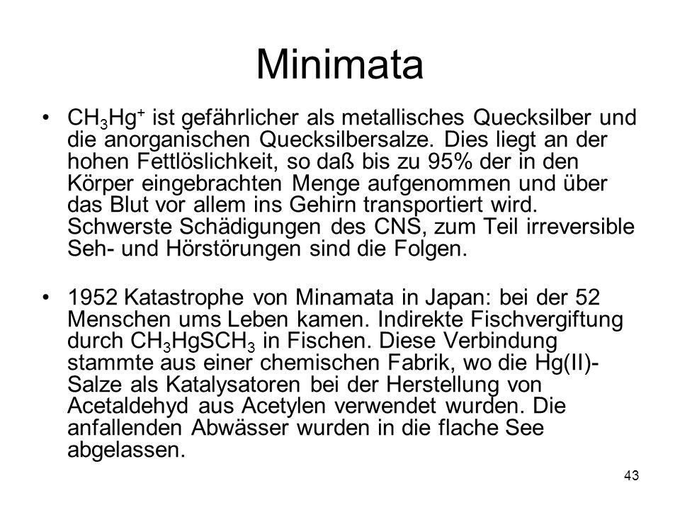 Minimata