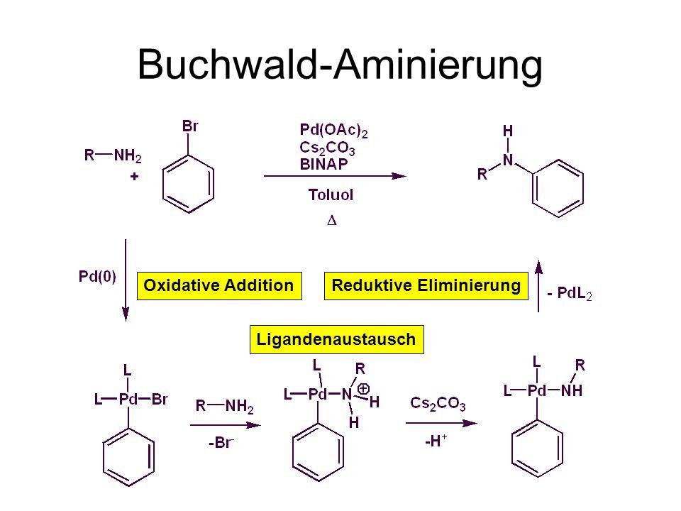 Buchwald-Aminierung Oxidative Addition Reduktive Eliminierung
