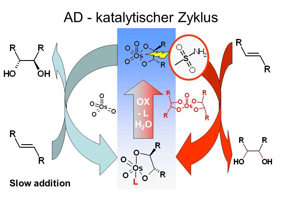 AD - katalytischer Zyklus