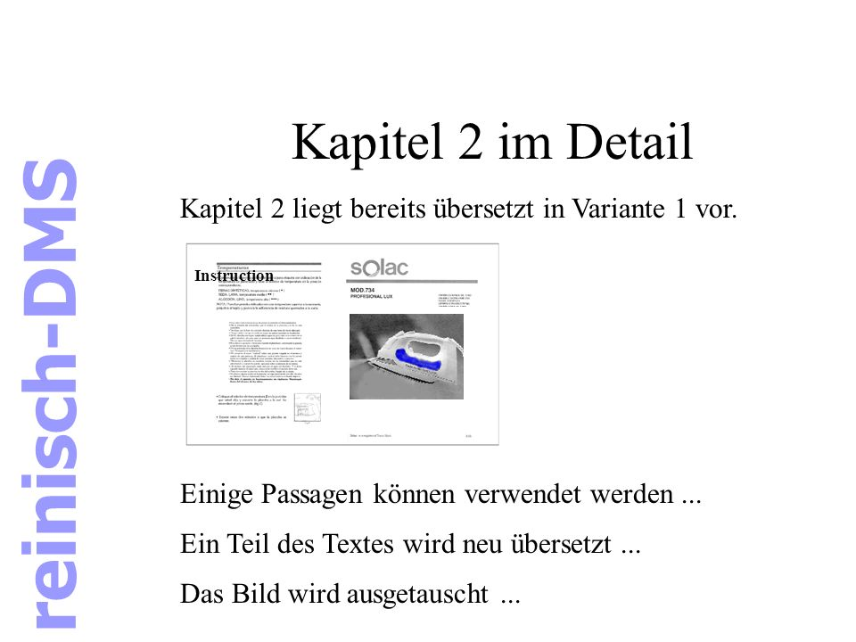 reinisch-DMS Kapitel 2 im Detail