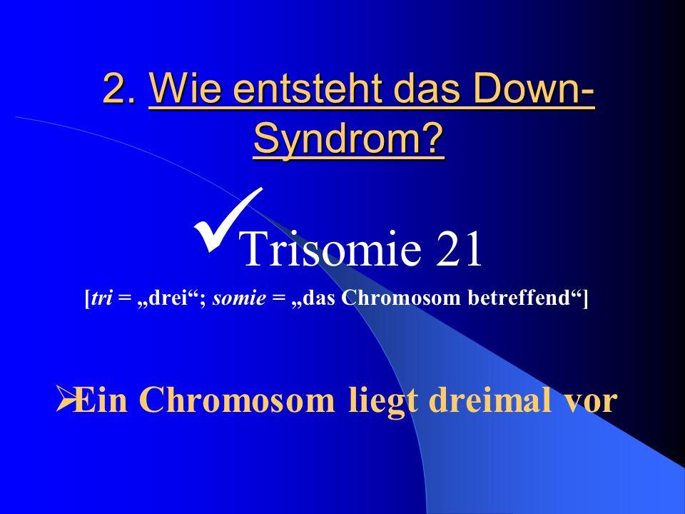 2. Wie entsteht das Down-Syndrom