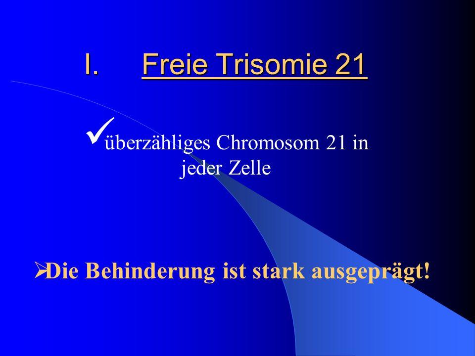 überzähliges Chromosom 21 in jeder Zelle