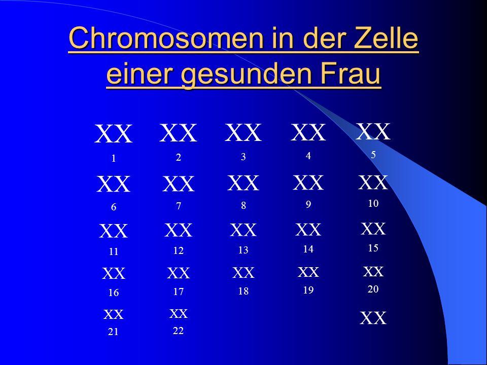 Chromosomen in der Zelle einer gesunden Frau