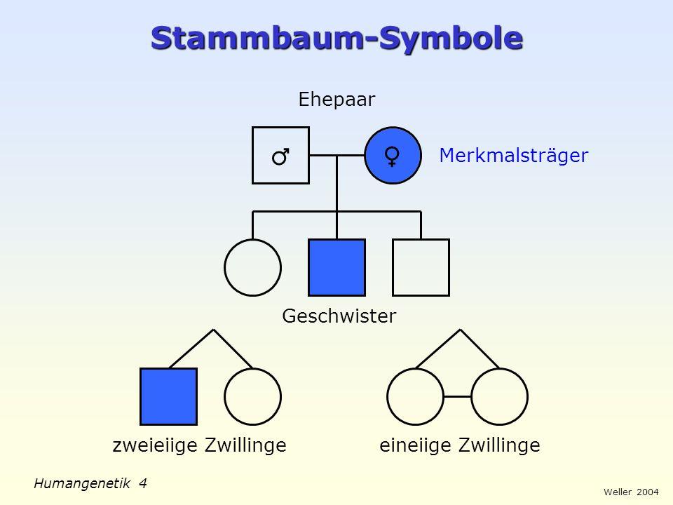 Stammbaum-Symbole ♂ ♀ Ehepaar Merkmalsträger Geschwister