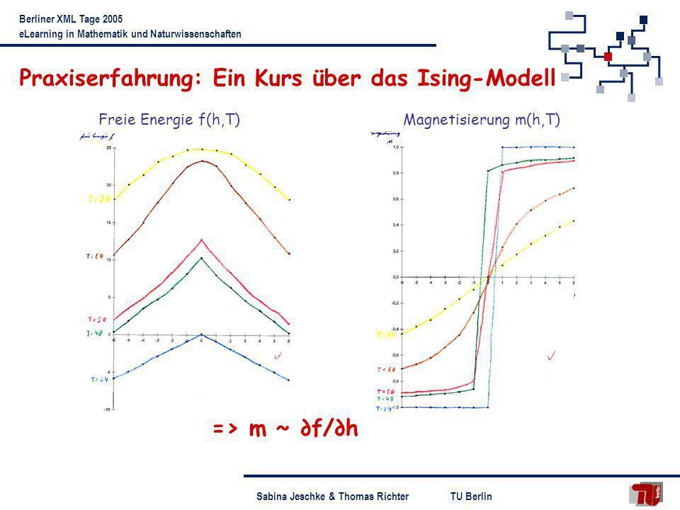 Praxiserfahrung: Ein Kurs über das Ising-Modell
