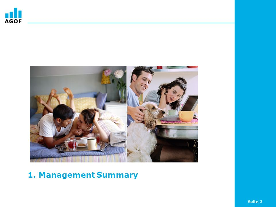 1. Management Summary