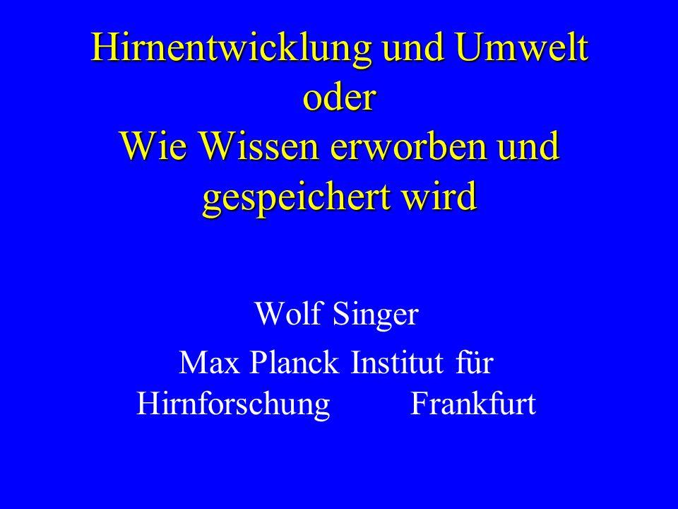 Wolf Singer Max Planck Institut für Hirnforschung Frankfurt