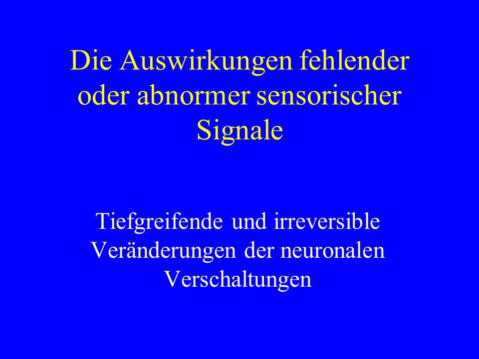 Die Auswirkungen fehlender oder abnormer sensorischer Signale